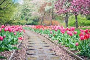 L'aménagement du jardin et du potager sans difficulté