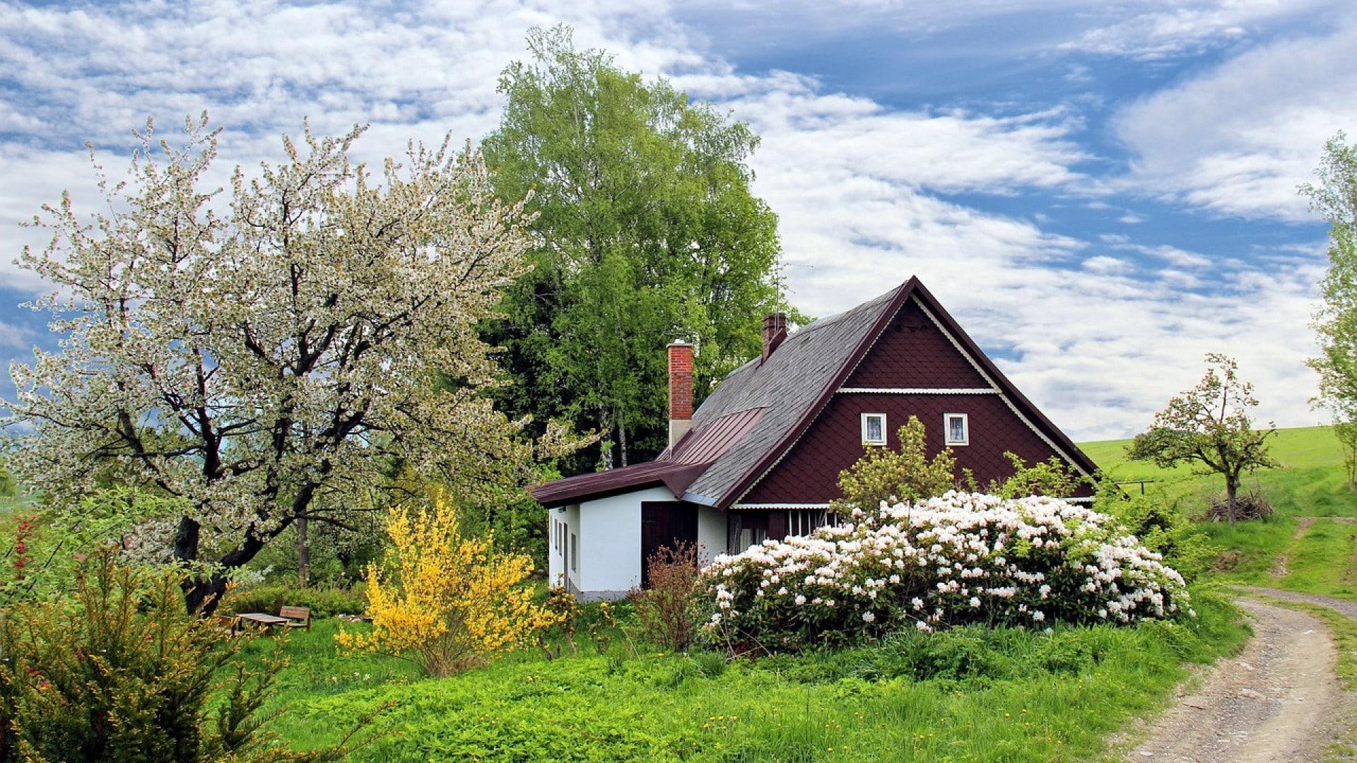Top des idées pour aménager son jardin